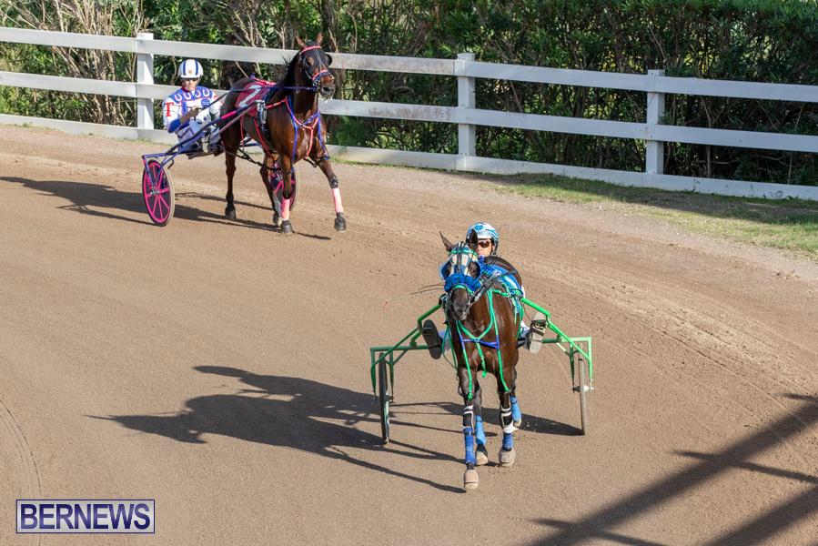 DHPC-Harness-Pony-Racing-Bermuda-December-26-2019-6094