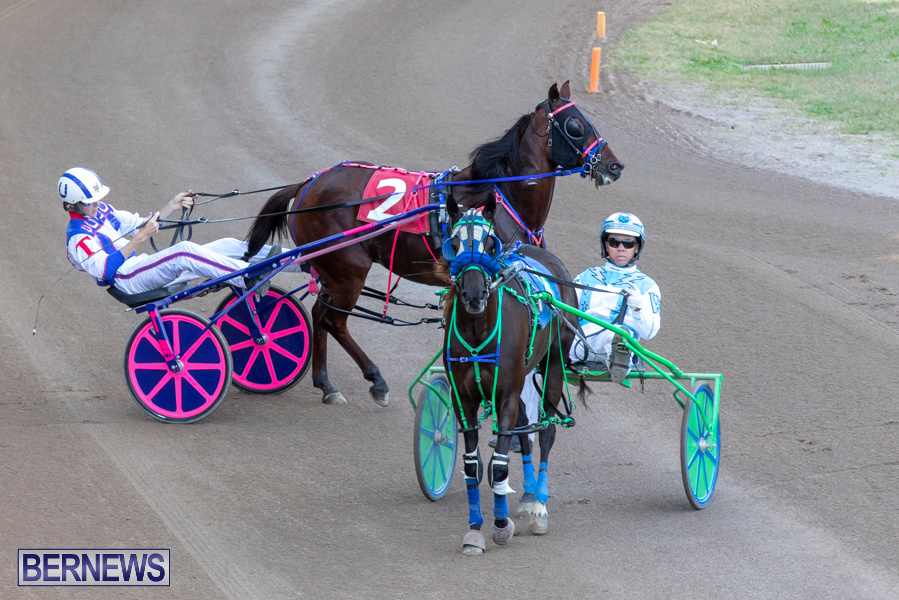 DHPC-Harness-Pony-Racing-Bermuda-December-26-2019-6103