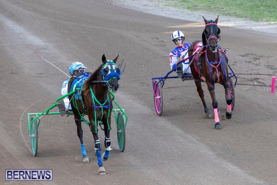 DHPC-Harness-Pony-Racing-Bermuda-December-26-2019-6106