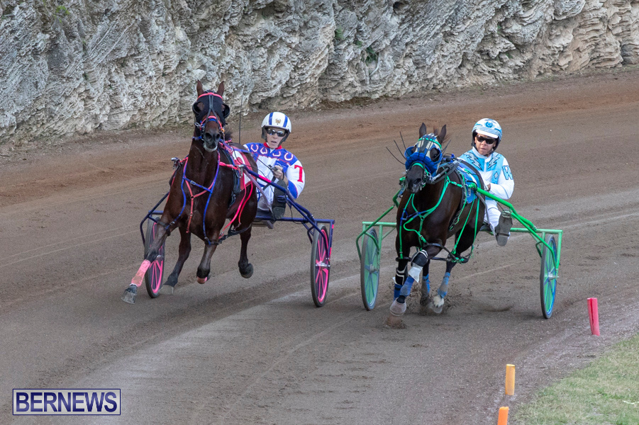 DHPC-Harness-Pony-Racing-Bermuda-December-26-2019-6133