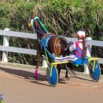 DHPC Harness Pony Racing Bermuda, December 26 2019-6147