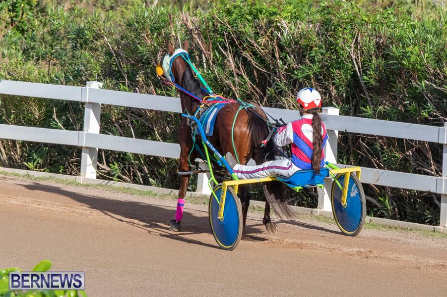 DHPC-Harness-Pony-Racing-Bermuda-December-26-2019-6147