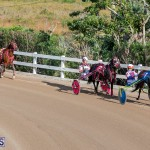 DHPC Harness Pony Racing Bermuda, December 26 2019-6153