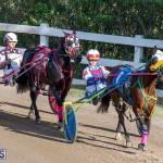 DHPC Harness Pony Racing Bermuda, December 26 2019-6154