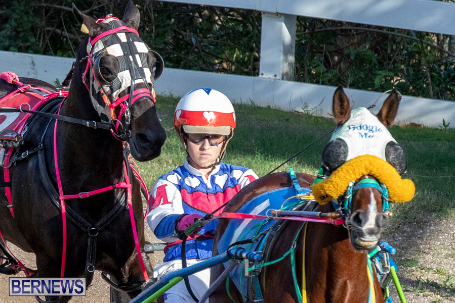 DHPC-Harness-Pony-Racing-Bermuda-December-26-2019-6157