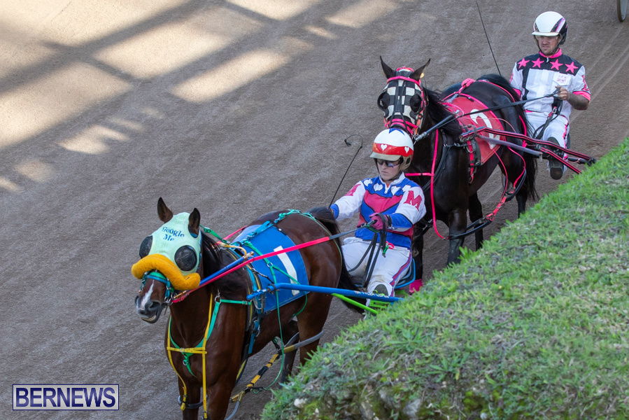 DHPC-Harness-Pony-Racing-Bermuda-December-26-2019-6160