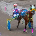 DHPC Harness Pony Racing Bermuda, December 26 2019-6166