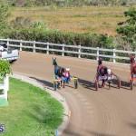 DHPC Harness Pony Racing Bermuda, December 26 2019-6177