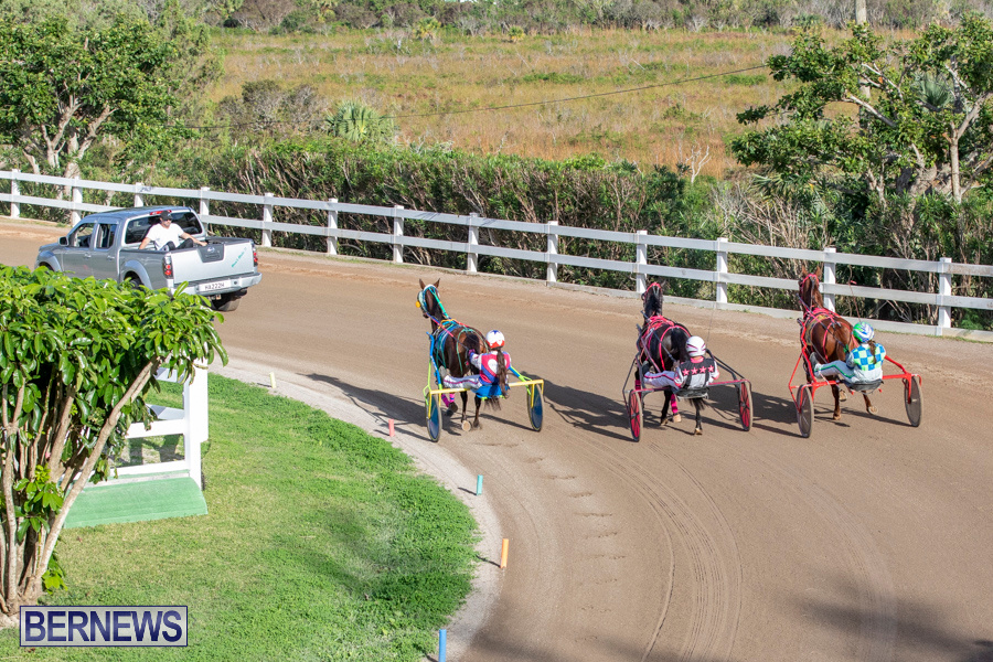 DHPC-Harness-Pony-Racing-Bermuda-December-26-2019-6177