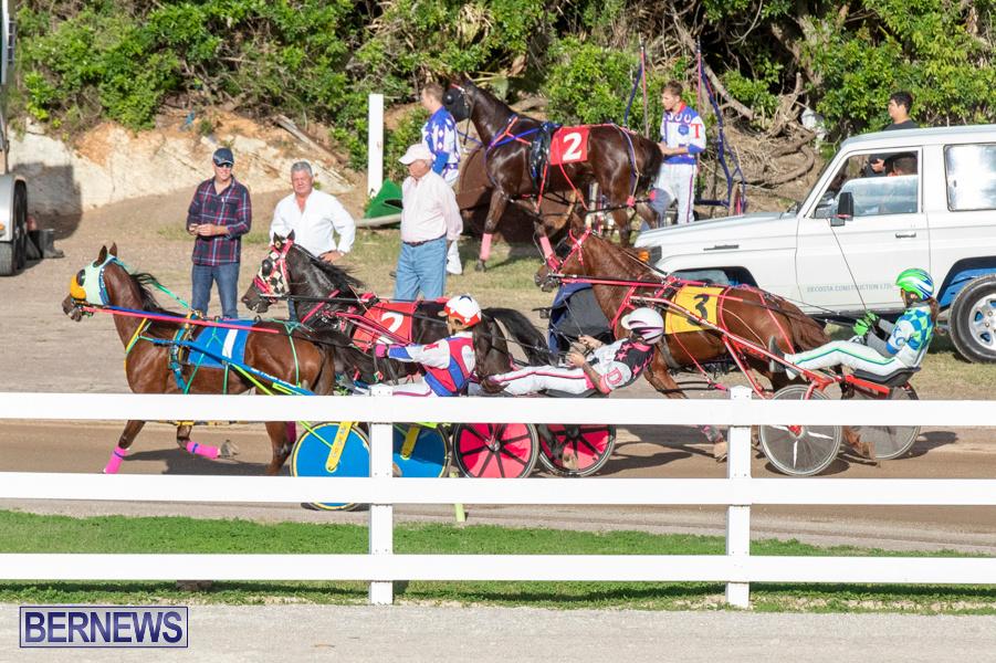 DHPC-Harness-Pony-Racing-Bermuda-December-26-2019-6180