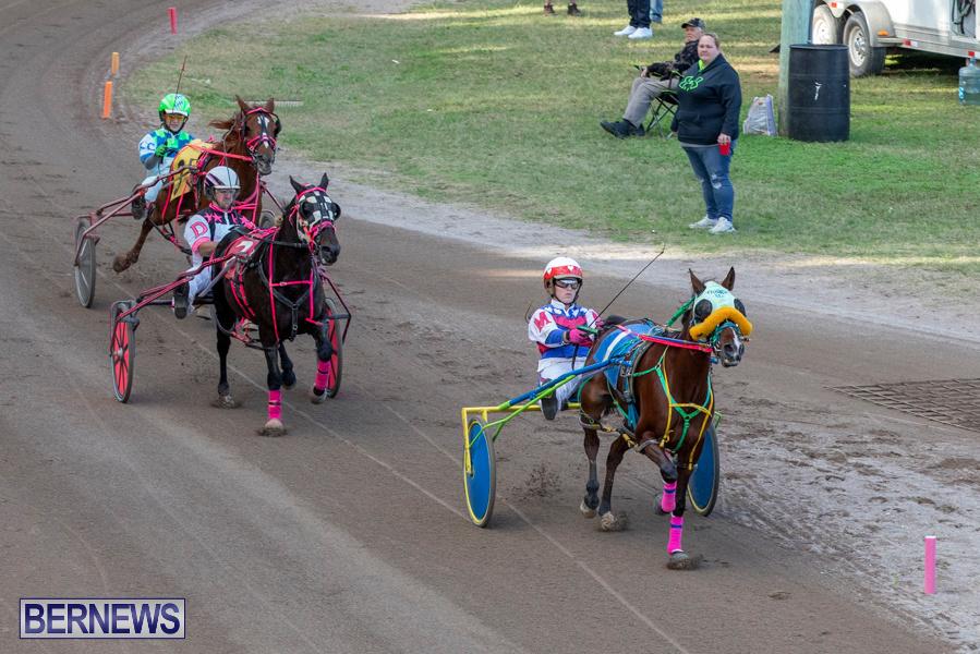 DHPC-Harness-Pony-Racing-Bermuda-December-26-2019-6189