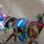 DHPC Harness Pony Racing Bermuda, December 26 2019-6191