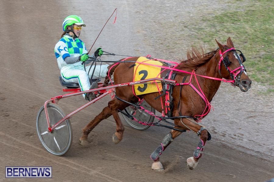 DHPC-Harness-Pony-Racing-Bermuda-December-26-2019-6195