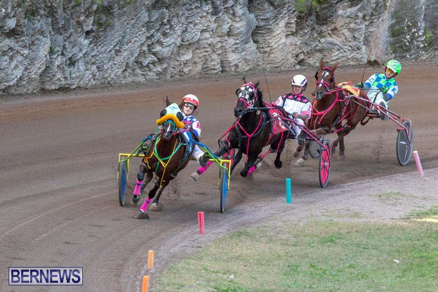 DHPC-Harness-Pony-Racing-Bermuda-December-26-2019-6204