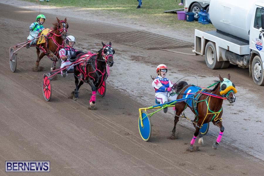 DHPC-Harness-Pony-Racing-Bermuda-December-26-2019-6213