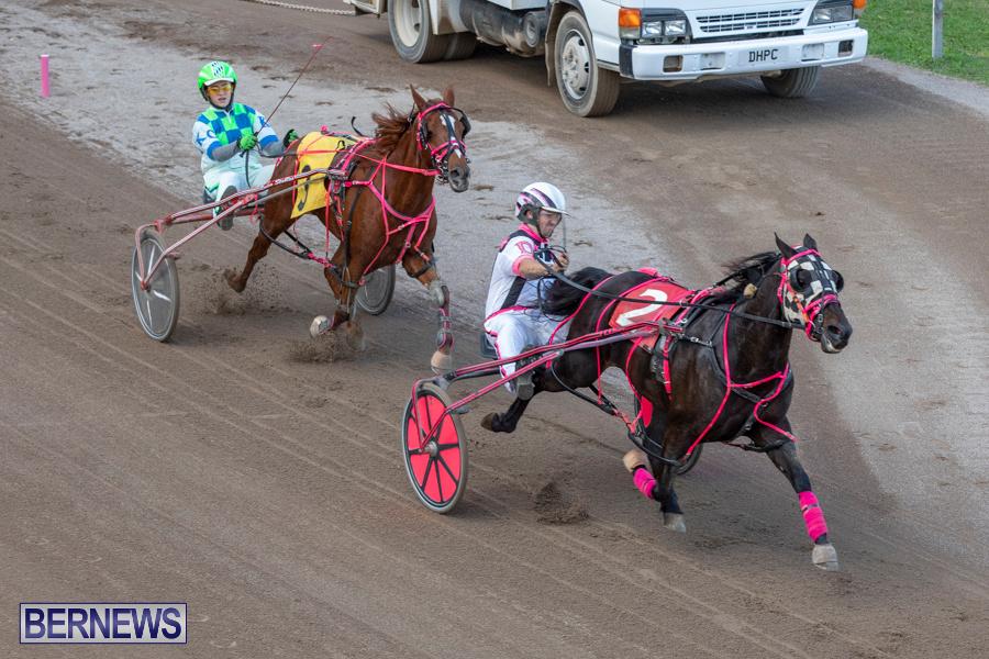 DHPC-Harness-Pony-Racing-Bermuda-December-26-2019-6216