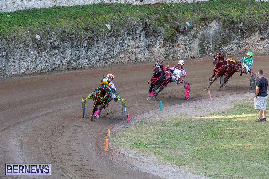 DHPC-Harness-Pony-Racing-Bermuda-December-26-2019-6230