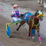 DHPC Harness Pony Racing Bermuda, December 26 2019-6237