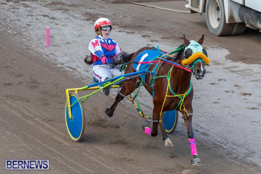 DHPC-Harness-Pony-Racing-Bermuda-December-26-2019-6237
