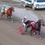 DHPC Harness Pony Racing Bermuda, December 26 2019-6241