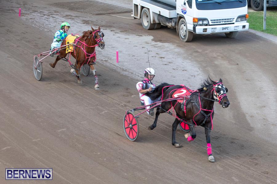 DHPC-Harness-Pony-Racing-Bermuda-December-26-2019-6241