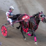DHPC Harness Pony Racing Bermuda, December 26 2019-6242