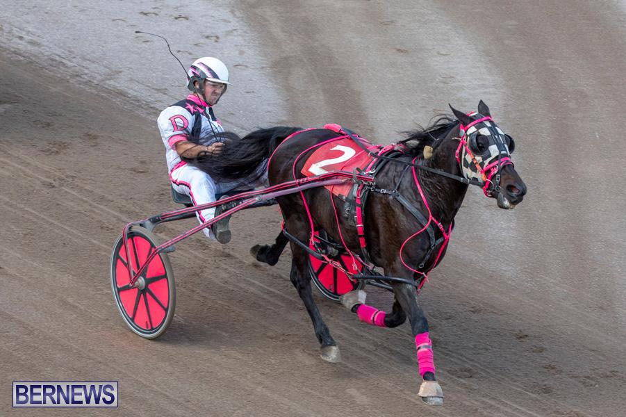 DHPC-Harness-Pony-Racing-Bermuda-December-26-2019-6242