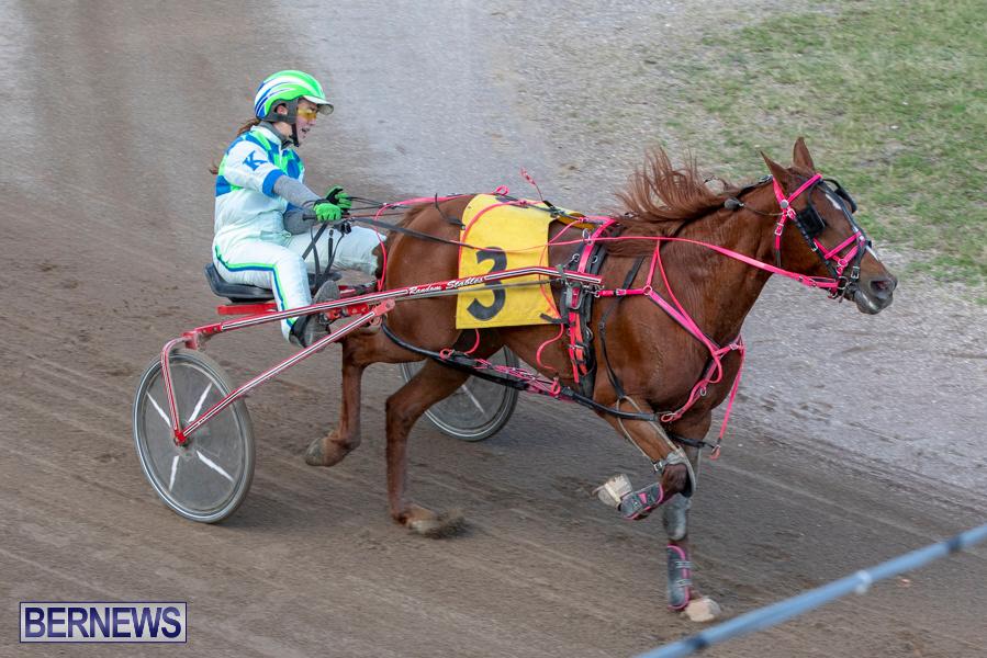 DHPC-Harness-Pony-Racing-Bermuda-December-26-2019-6246