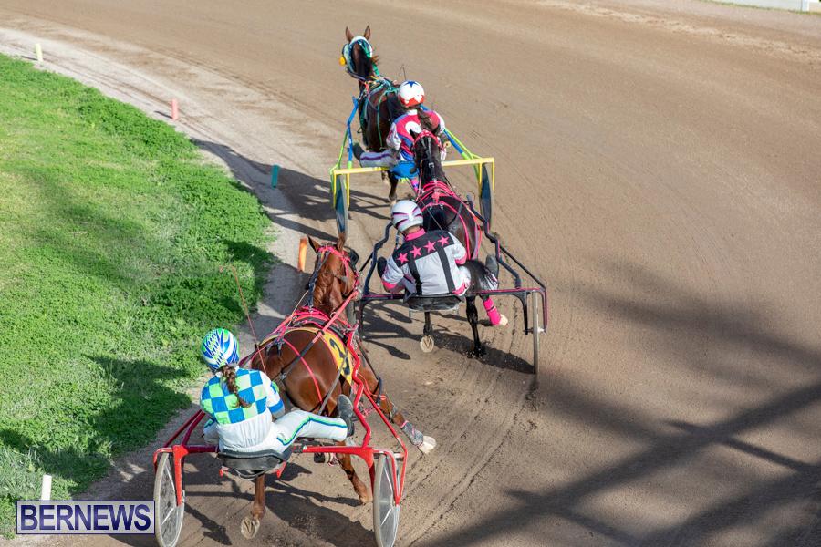 DHPC-Harness-Pony-Racing-Bermuda-December-26-2019-6250