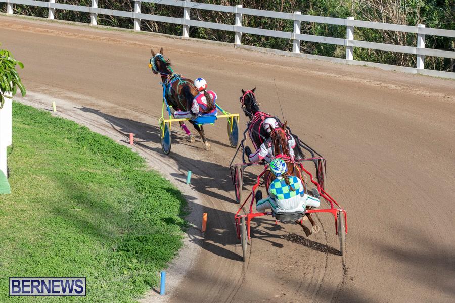 DHPC-Harness-Pony-Racing-Bermuda-December-26-2019-6251