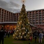 Fairmont Southampton Christmas Tree Lighting Bermuda, December 8 2019-3178