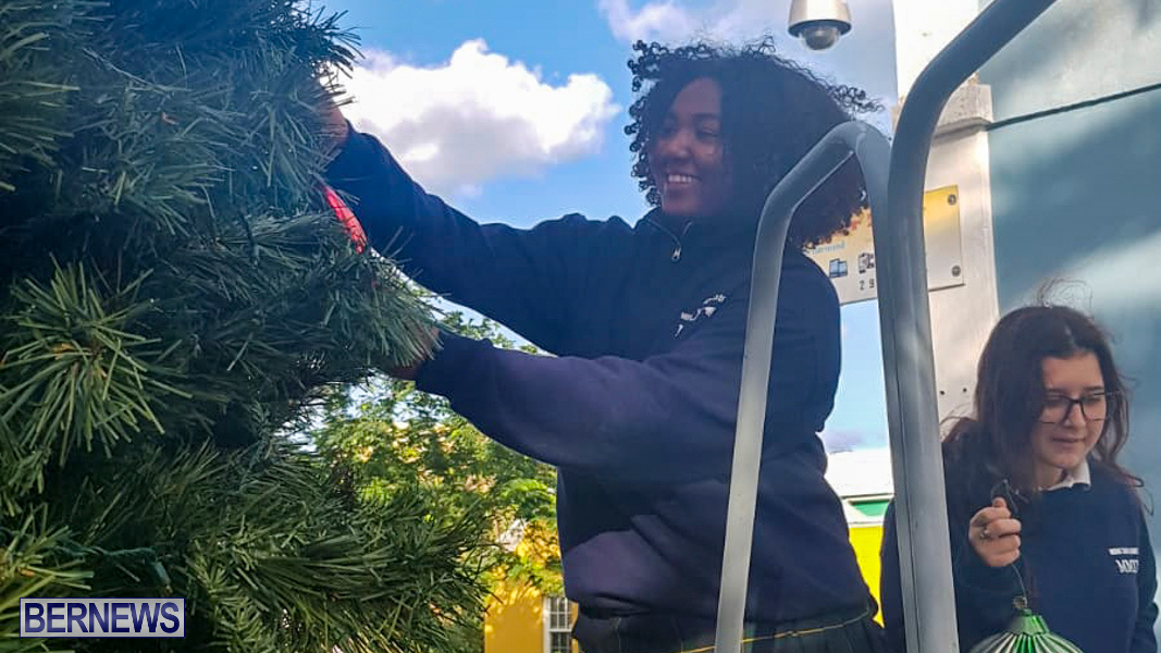 Hamilton Christmas Tree Decorating Bermuda, December 6 2019-07-5