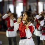 Marketplace Christmas Santa Claus Parade Bermuda, December 1 2019-5129