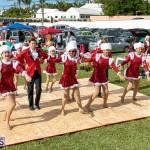 St. Anthony's Church Christmas Fair and Car Boot Combo Bermuda, November 30 2019-4209