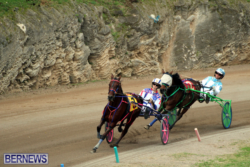 Bermuda-Harness-Pony-Racing-Jan-19-2020-12