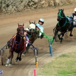 Bermuda Harness Pony Racing Jan 19 2020 (14)