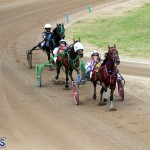 Bermuda Harness Pony Racing Jan 19 2020 (16)