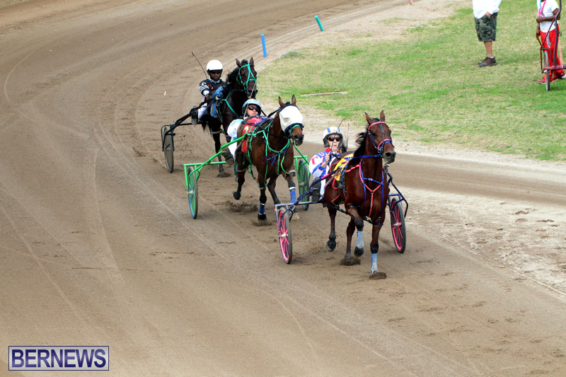 Bermuda-Harness-Pony-Racing-Jan-19-2020-16