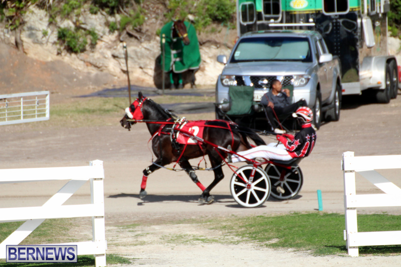 Bermuda-Harness-Pony-Racing-Jan-19-2020-17
