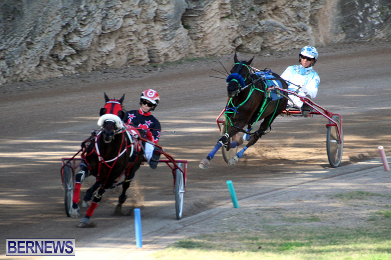 Bermuda-Harness-Pony-Racing-Jan-19-2020-19