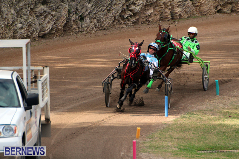 Bermuda-Harness-Pony-Racing-Jan-19-2020-3