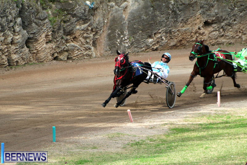 Bermuda-Harness-Pony-Racing-Jan-19-2020-4