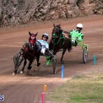 Bermuda Harness Pony Racing Jan 19 2020 (5)