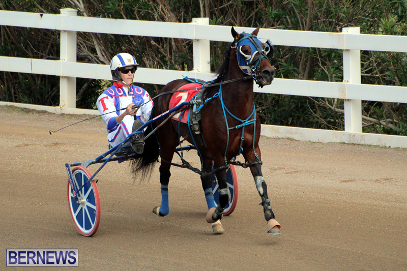 Bermuda-Harness-Pony-Racing-Jan-19-2020-8