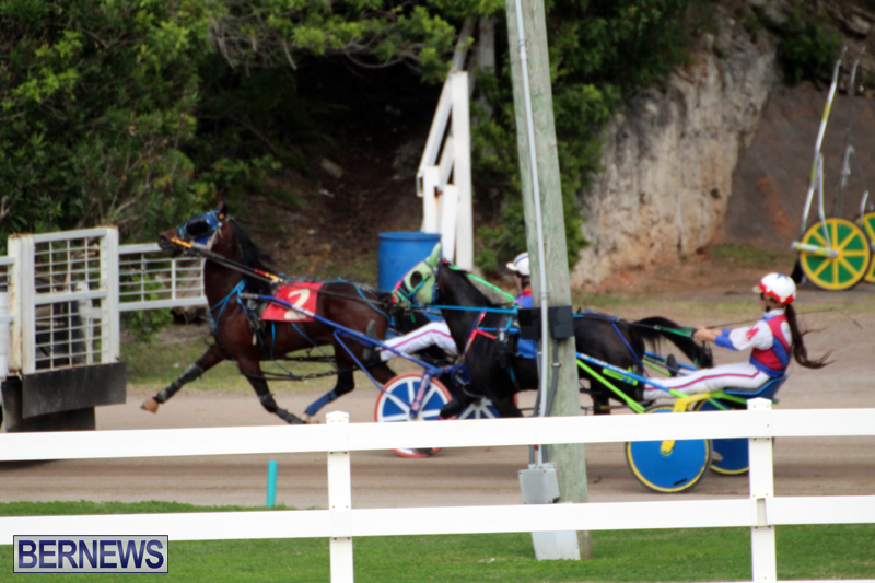 Bermuda-Harness-Pony-Racing-Jan-19-2020-9