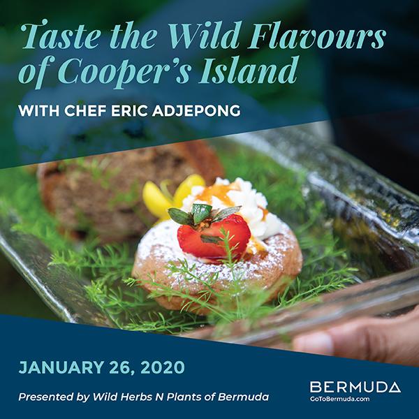 Cooper  Island Culinary Tour Bermuda Jan 2020