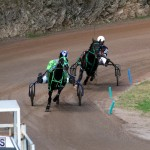 Bermuda Harness Pony Racing Feb 9 2020 (1)