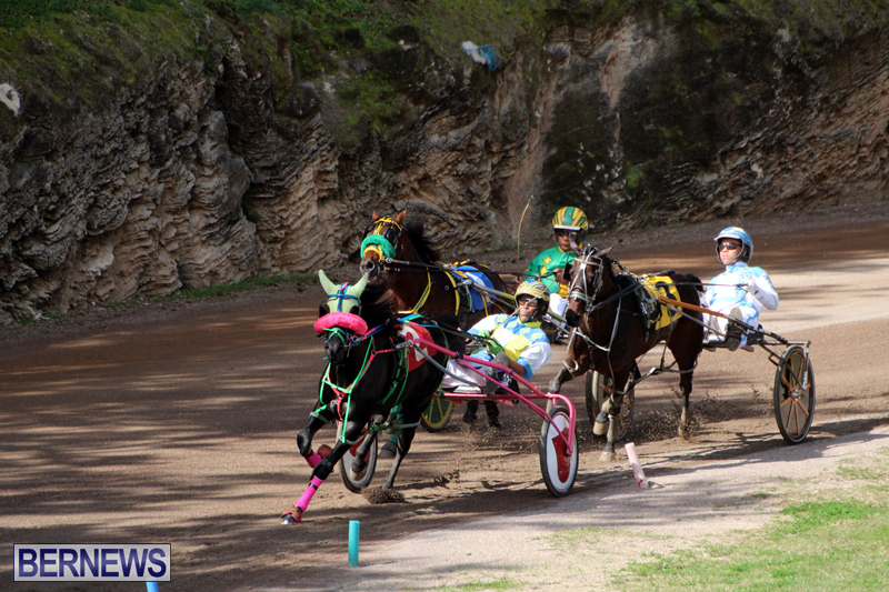Bermuda-Harness-Pony-Racing-Feb-9-2020-10