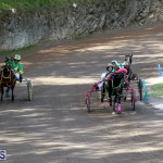 Bermuda Harness Pony Racing Feb 9 2020 (11)