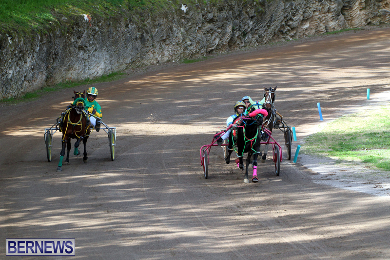 Bermuda-Harness-Pony-Racing-Feb-9-2020-11